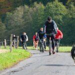 Cyklostezka Rakousy